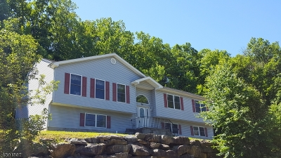 Dover Town Single Family Home For Sale: 70 Boonton St