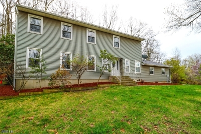 Byram Twp. Single Family Home For Sale: 11 Briar Ln