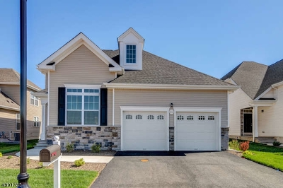Hillsborough Twp. Single Family Home For Sale: 95 Kline Rd