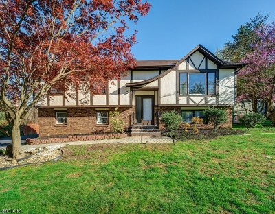 Parsippany-Troy Hills Twp. Single Family Home For Sale: 2 Carroll Ct