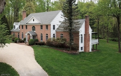 Clinton Twp. Single Family Home For Sale: 38 Country Oaks Rd