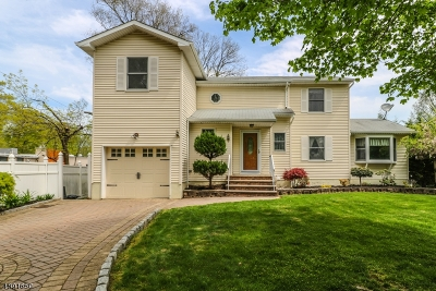 Scotch Plains Twp. Single Family Home For Sale: 809 Odonnell Ave