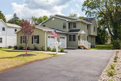 Morristown Town, Morris Twp. Multi Family Home For Sale: 36 W Hanover Ave