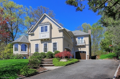 Westfield Town Single Family Home For Sale: 81 Fairhill Dr