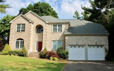 Roxbury Twp. Single Family Home For Sale: 8 Larsen Dr