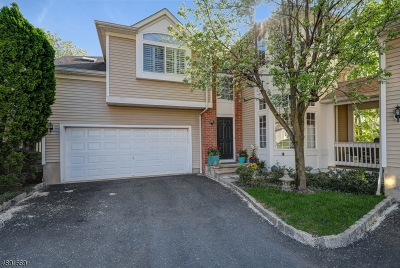 Chatham Boro Condo/Townhouse For Sale: 30 Schindler Ct #30