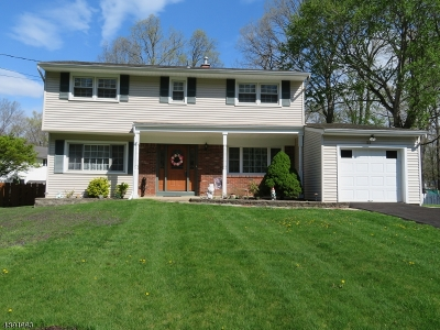 Mount Olive Twp. Single Family Home For Sale: 21 Deer Path Dr