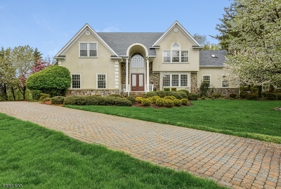 Mendham Boro NJ Single Family Home For Sale: $1,149,000