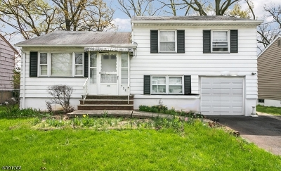 Kenilworth Boro Single Family Home For Sale: 725 Summit Ave