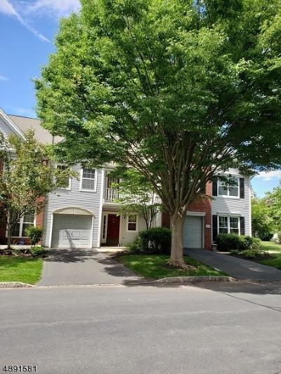 Bridgewater Twp. Condo/Townhouse For Sale: 3007 Johnson Circle #07