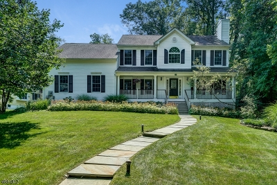 Chatham Twp Single Family Home For Sale: 39 School Ave