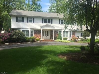 Denville Twp. Single Family Home For Sale: 5 Hickory Rd