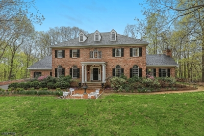 Tewksbury Twp. Single Family Home For Sale: 28 Ridge Rd