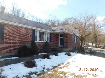 Holland Twp., Milford Boro Single Family Home For Sale: 156 Mt Joy Rd