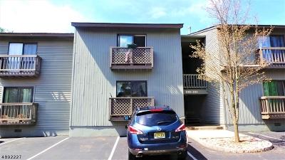 Glen Gardner Boro, Hampton Boro Condo/Townhouse For Sale: 1109 Spruce Hills Dr