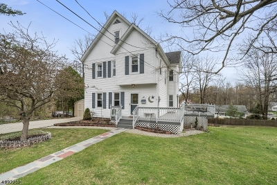 Newton Town Single Family Home For Sale: 67 Ryerson Ave