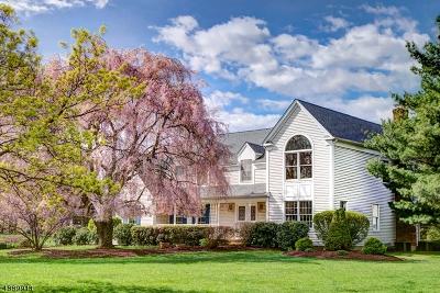 Bernards Twp., Bernardsville Boro Single Family Home For Sale: 157 Woods End