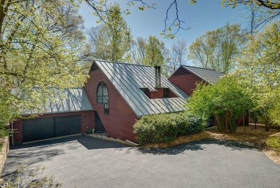 Chatham Boro Single Family Home For Sale: 10 Woods Ln