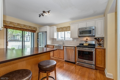 Bernards Twp. Condo/Townhouse For Sale: 193 Locust Ln