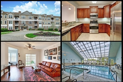 Rockaway Twp. Condo/Townhouse For Sale: 7308 Polk Dr #7308