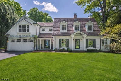 Chatham Twp. Single Family Home For Sale: 25 Driftway