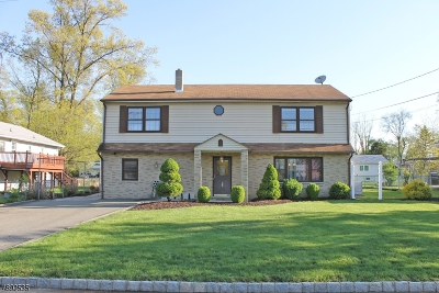 Parsippany-Troy Hills Twp. Single Family Home For Sale: 80 Hawkins Ave