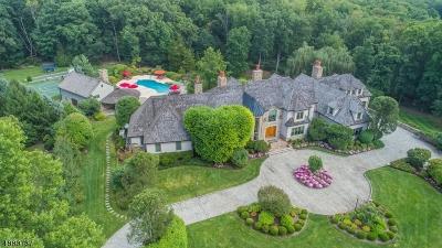 Bernards Twp., Bernardsville Boro Single Family Home For Sale: 44 Royal Oak Dr
