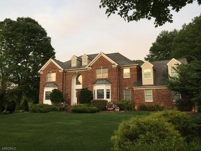 Randolph Twp. Single Family Home For Sale: 33 Quail Run