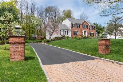 Randolph Twp. Single Family Home For Sale: 34 Heather Ln