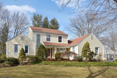 Morristown Town, Morris Twp. Single Family Home For Sale: 17 Cottonwood Rd