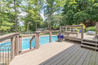High Bridge Boro Single Family Home For Sale: 4 Michael Ln