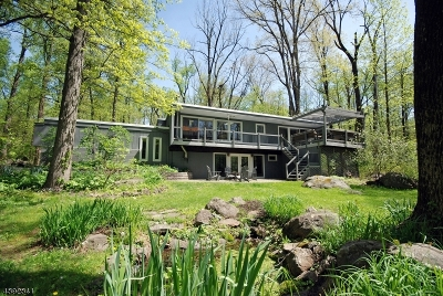 East Amwell Twp. Single Family Home For Sale: 93 Snydertown Rd
