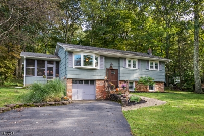 Hardyston Twp. Single Family Home For Sale: 4 Cub Ln