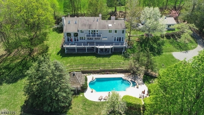 Mendham Boro, Mendham Twp. Single Family Home For Sale: 590 Cherry Ln