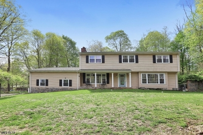Wayne Twp. Single Family Home For Sale: 596 Terhune Dr