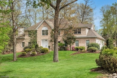 Montville Twp. Single Family Home For Sale: 28 Woodshire Ter