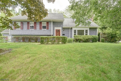 Single Family Home For Sale: 500 Long Hill Dr