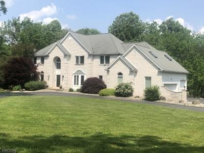 Franklin Twp. Single Family Home For Sale: 18 Laurelton Trl