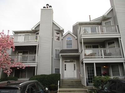 Paterson City Single Family Home For Sale: 30 Quartz Ln