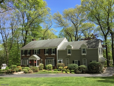 Parsippany-Troy Hills Twp. Single Family Home For Sale: 28 Long Ridge Rd