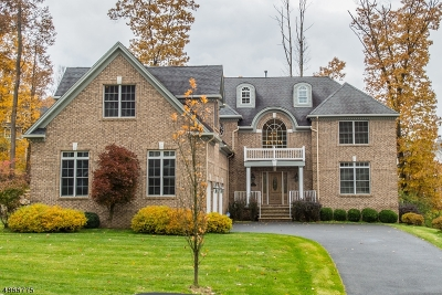 Mount Olive Twp. Single Family Home For Sale: 4 Jared Pl