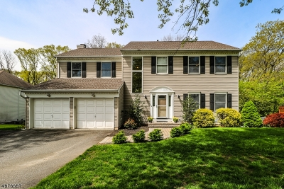 Readington Twp. Single Family Home For Sale: 19 Pittenger Rd