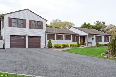 Roxbury Twp. Single Family Home For Sale: 7 Norman Lane