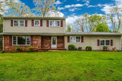 Readington Twp. Single Family Home For Sale: 41 E Oakland Dr