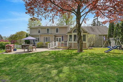 Bernards Twp., Bernardsville Boro Single Family Home For Sale: 195 W Oak St