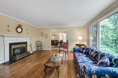 Morris Twp. Single Family Home For Sale: 7 Skyline Dr