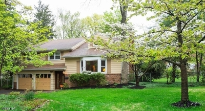 Scotch Plains Twp. Single Family Home For Sale: 329 Fawn Ridge Dr