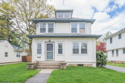 Boonton Town Single Family Home For Sale: 121 Roessler St