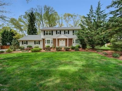 Montville Twp. Single Family Home For Sale: 21 Brittany Rd