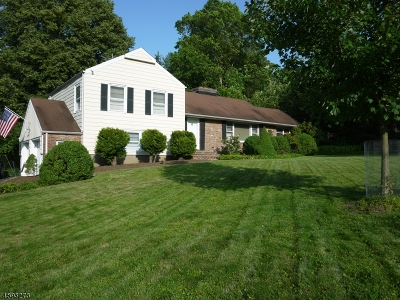 Long Hill Twp Single Family Home For Sale: 47 E Rayburn Rd